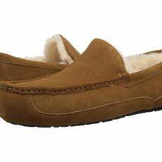 UGG Ascot (Chestnut) Men's Slippers