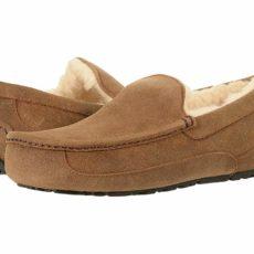 UGG Ascot - WIDE (Chestnut) Men's Slippers