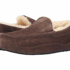 UGG Ascot - WIDE (Espresso) Men's Slippers